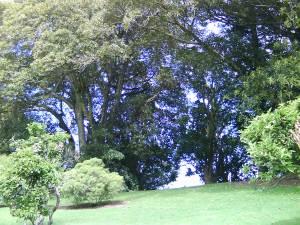Monte Cecilia Park, Hillsborough, Auckland